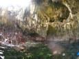 池 in ミニグロット