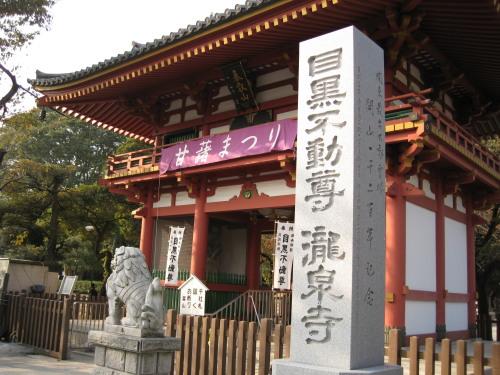 Megurofudoson_091029_1