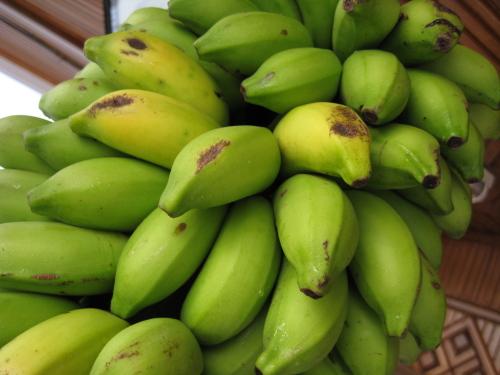 Banana_100117