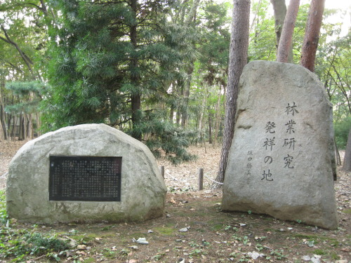 Rinsshinomori_091029_1